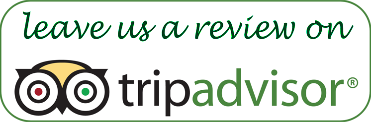 mercury residency in tripadvisor